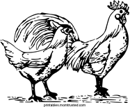 Hen and Rooster Free Coloring Page hen rooster tn