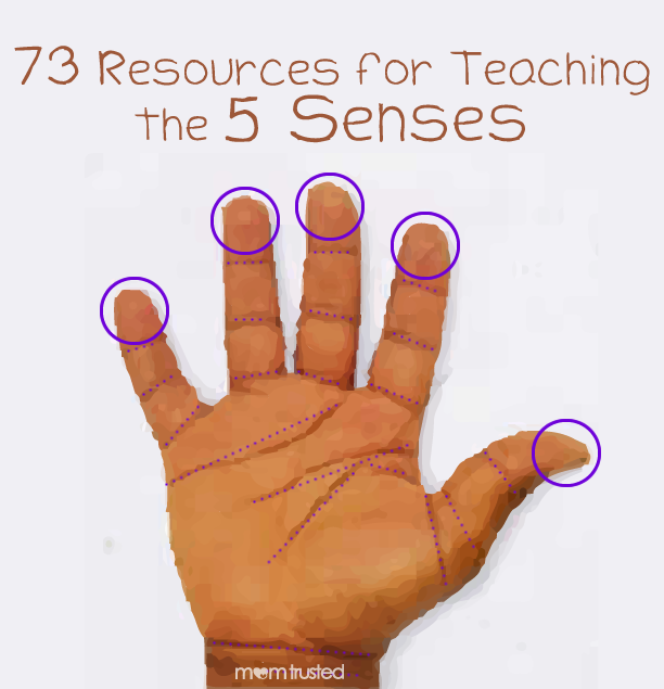 73 Free Resources & Activities for Teaching the 5 Senses resources for teaching the 5 senses.fw