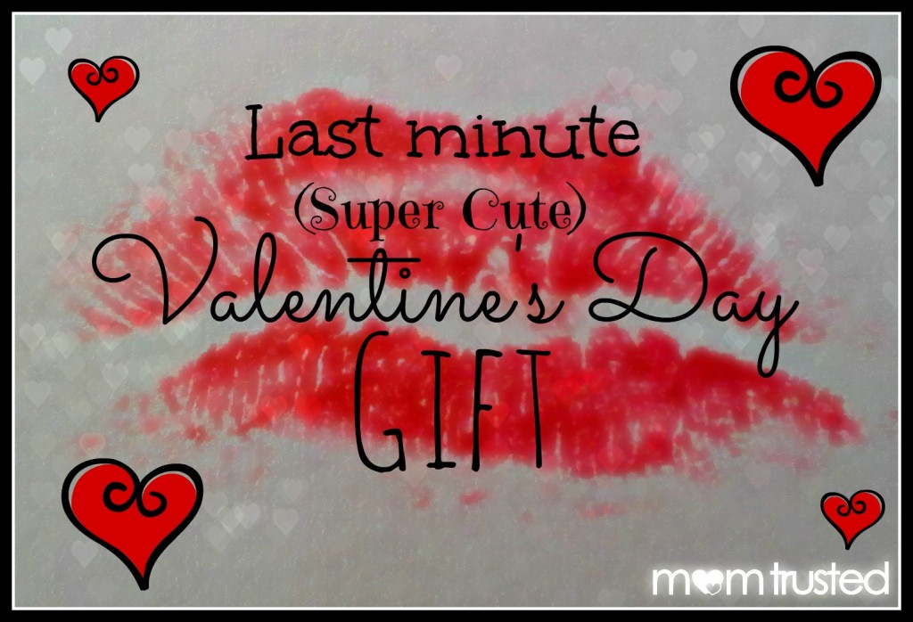 Super Cute Last Minute Valentines Day Gift 20130210 141829a1 1024x698