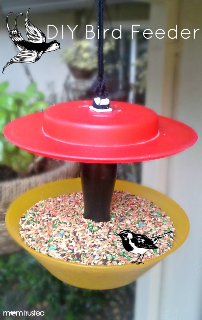DIY Bird Feeder DIY Bird Feeder MomTrusted 647x1024